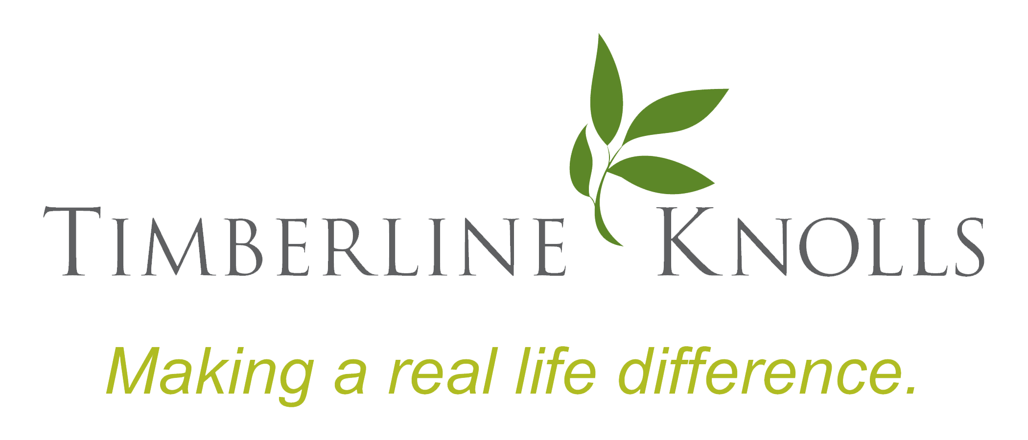Timberline Knolls - Making a Real Life Difference