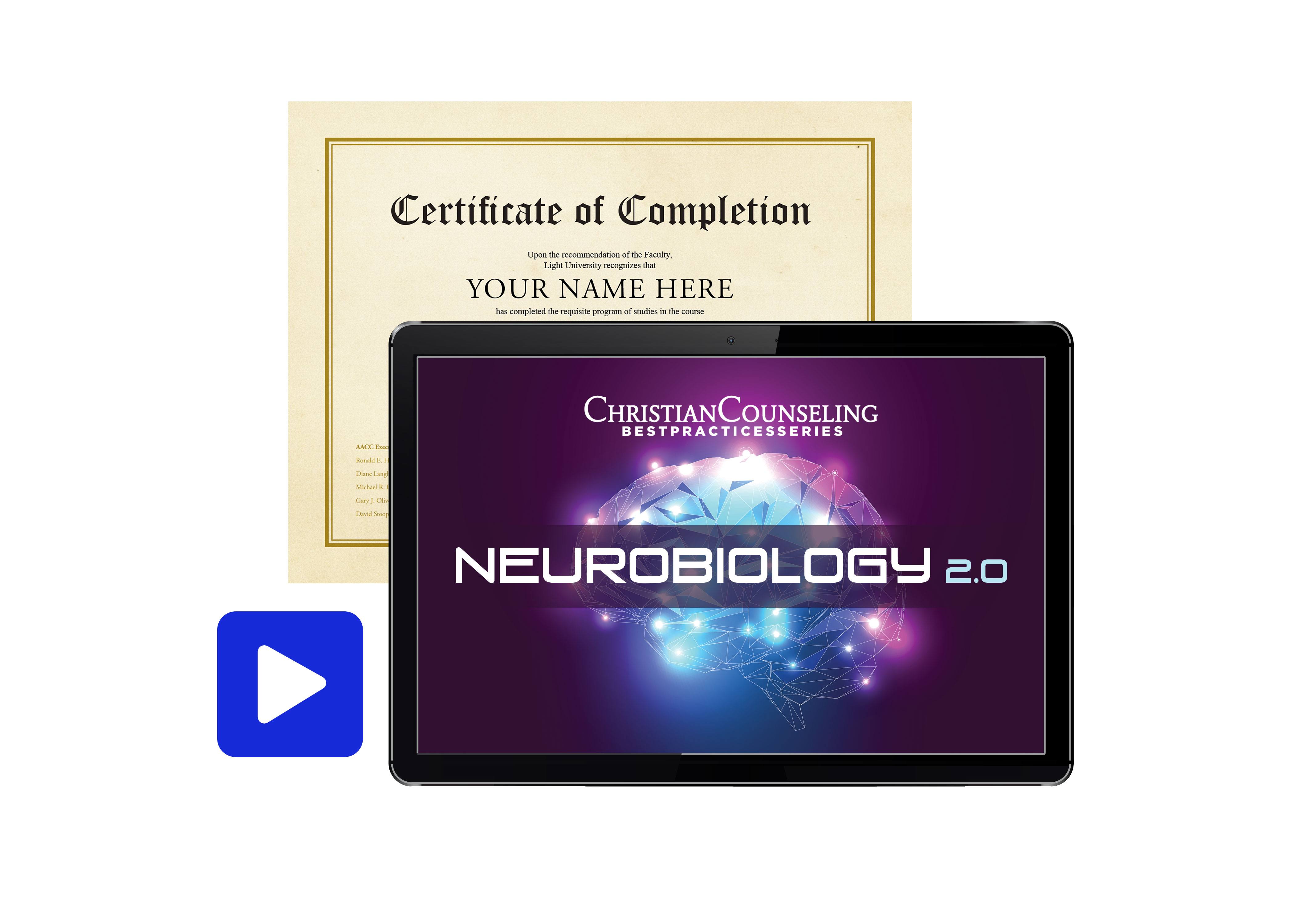 Neurobiology 2.0